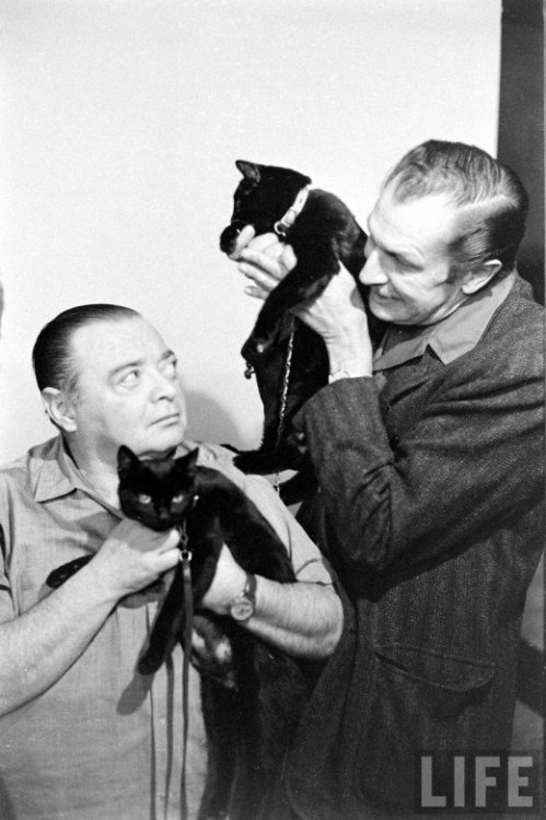 awesomepeoplehangingouttogether:  Peter Lorre, Vincent Price and some cats