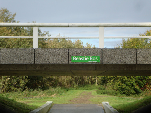Beastie Bos in Almere, Holland! (bos means forrest in dutch)..