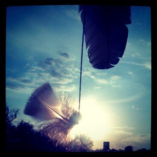 *Feathers* photography, iPhone, Instagram by R. Sherinian