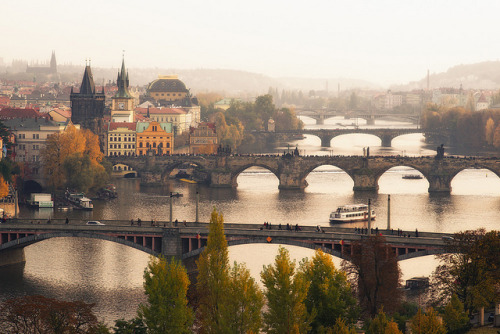 | ♕ |  Prague in mist - bridges over Vltava River