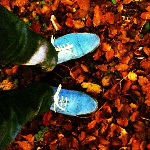 Don't step on my blue suede shoes! (Taken with instagram)