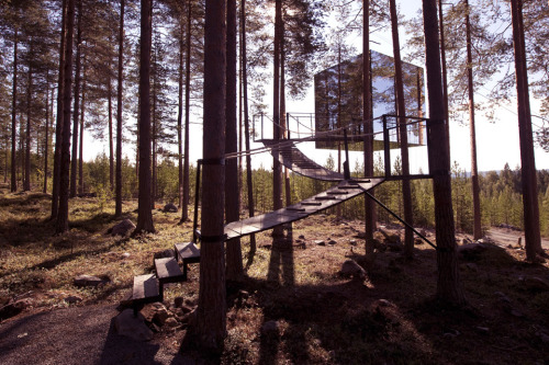 oddclod:  Mirror CubeTree Hotel in Harads, Sweden  I seriously need to go to sweden, they have the best stuff.