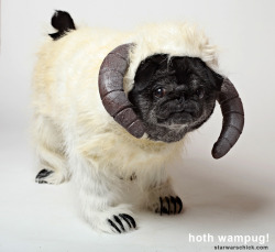 Wampug by Star Wars Chick 1