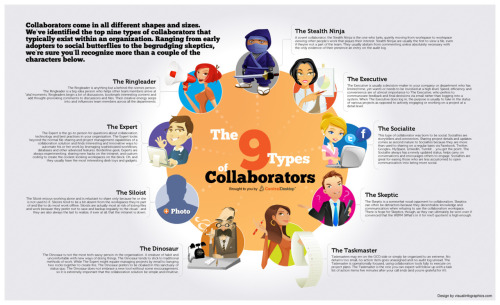 Which type of collaborator are you ?