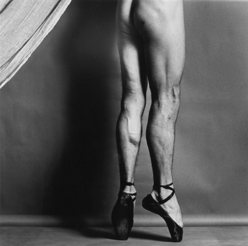 Robert Mapplethorpe,1979