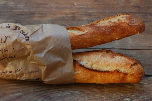 p-r-e-t-t-i-f-i-e-d:  coffee-in-london:  w-ildspirits:  cafeshopp:  baguettes  yummo  That watermelon looks yummy  how can you even think of eating that fox