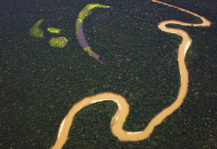 Despite being cut down at an alarming rate, the Amazon rainforest still covers 2.7 million square miles. Growing across nine different countries, it represents over half of the planet's remaining rainforests, making it the largest and most biodiverse tropical rainforest in the world. The forest is fed by the Amazon river, the largest river in the world by volume, which also has the biggest drainage basin on the planet. | image by Theo Allofs