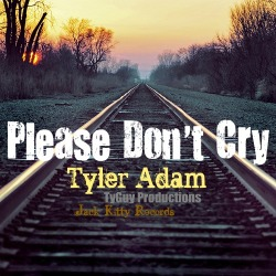 Please Don't Cry (Song Art)