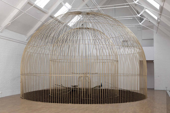 shinyslingback:   Mircea Cantor, The Need For Uncertainty   3 cages covered with gold painting, 2 peacocks.