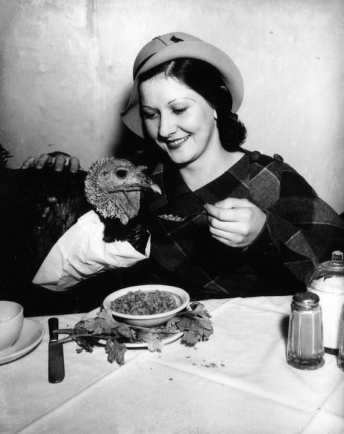 Girl feeds bib wearing turkey at a restaurant in Los Angeles, CA - c. 1930s This is me at Thanksgiving, basically…..