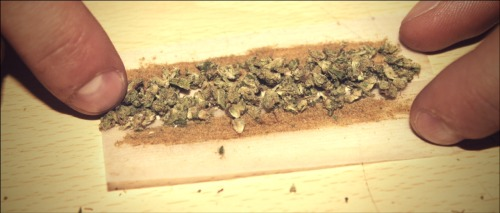 rizla smeared in reclaim hash oil, covered in kief, and then twist it up…