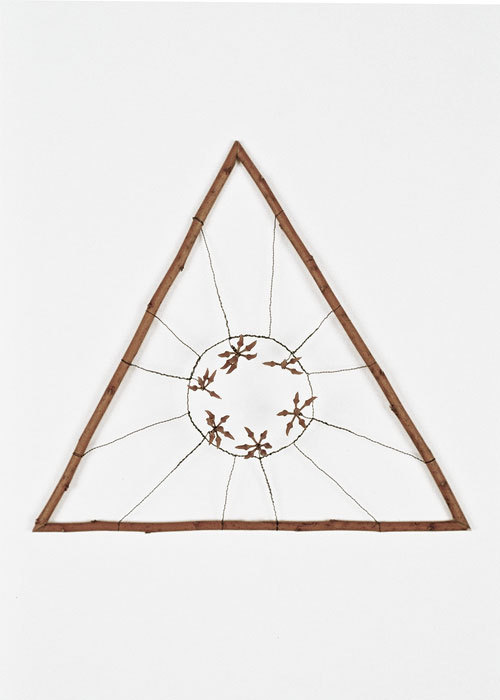Mari Andrews Untitled 1228 wood, wire and pods 2003