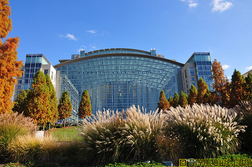 Gaylord National Resort Hotel