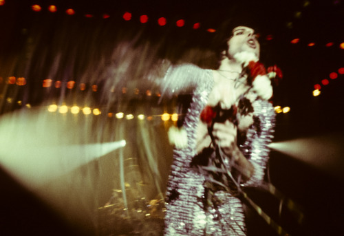 Concerts were a bore to shoot, but not Freddie Mercury at a Queen concert.  Photo by Brad Elterman
