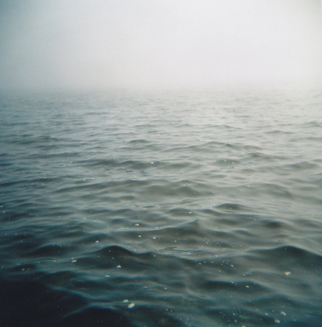 untitled by Monica Forss on Flickr.