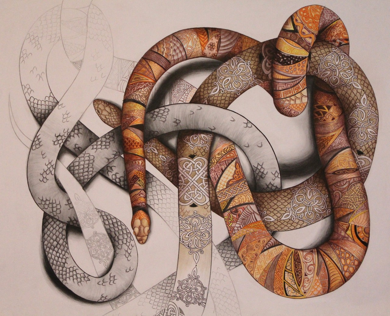 Laura Mills-Whittaker - A Level art piece, 'Knots, Loops & Laces'  Pencil drawing and water colours :)