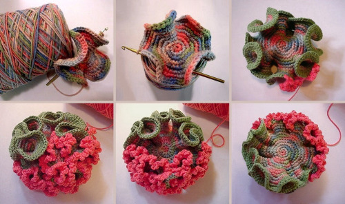 "freshphotons:  ""Evolution of a hyperbolic pseudosphere in crochet."""