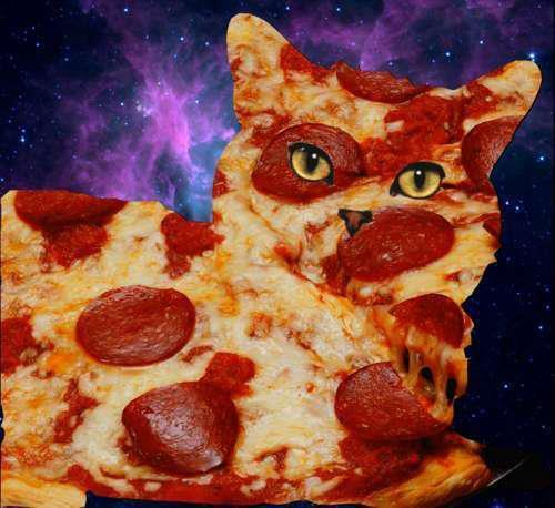 omgcatsinspace:  pizza cat in space… i think so sumbitted by musicmakestheworldturnround