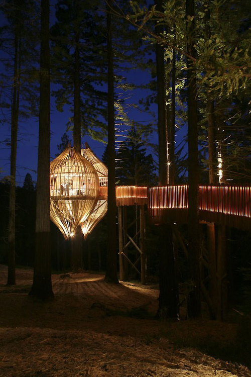 This treehouse would suffice as my future home too.