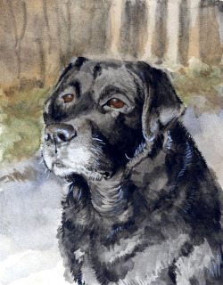 Pele - Watercolour - A5 - 2010 Rest in peace.