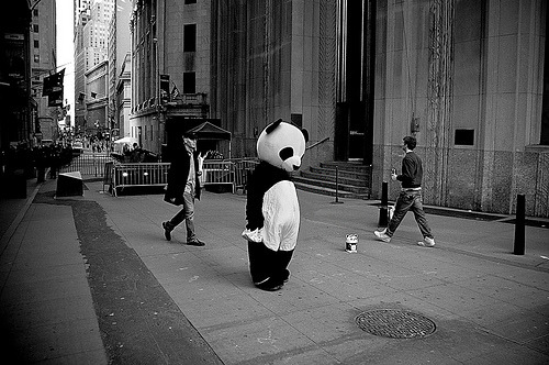 pralines-and-cream:  Oh hai, I'm just a Panda. Wassup.