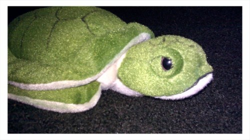 tort-time:  Meet BP. He's my stuffed sea turtle & MRI buddy. He is up and about in preparation for my MRI. Having him with me helps me have something to focus on, reminds me of zoya, and allows me the opportunity to evoke strange looks from the hospital staff when I tell them his name is BP (which is fun for me… I'm like that)