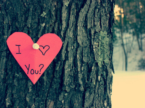 I Love You by {peace&love♥} on Flickr.