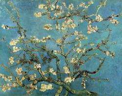 cygnesdelanuit:  Branches with Almond blossoms, 1890, by Vincent van Gogh