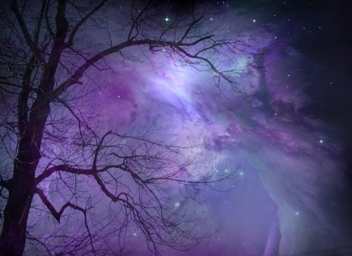 Tree and Nebula by *wyldraven