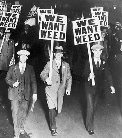 prohibition (via Dave Hemp)