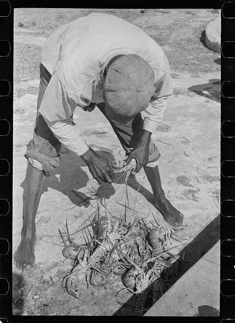 Lobsterman and his catch, 1938. Source: Library of Congress