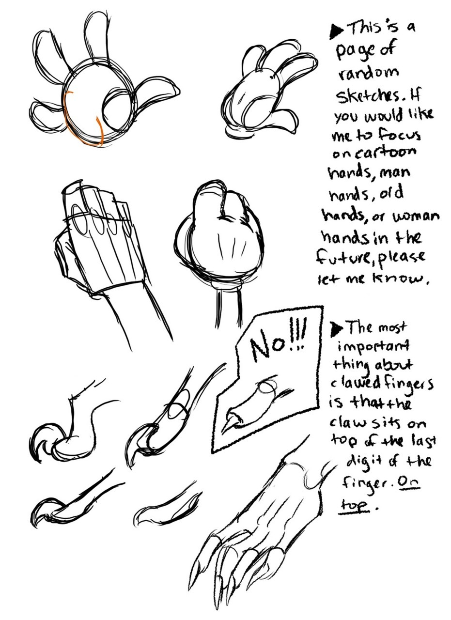 freyacake:  wannabeanimator:  Hand drawing references by Bethany Craig  future fuckin reference.