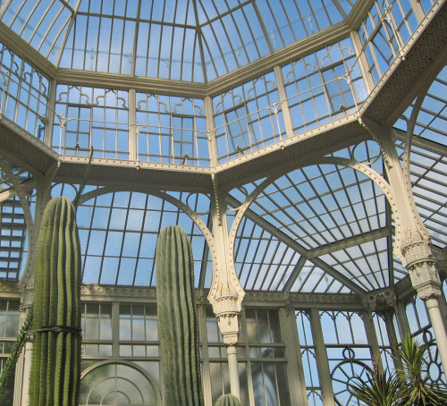 This magnificent antique glass conservatory is located in the Wilhelma Botanical Gardens in Stuttgart, Germany. This mid-19th century building was once part of the royal palace located on the grounds, and is built in the Moorish Revival style. (this photo is one of my own, taken last spring). (by waterlily78)