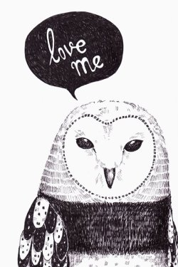 Love me. #Owl illustration.