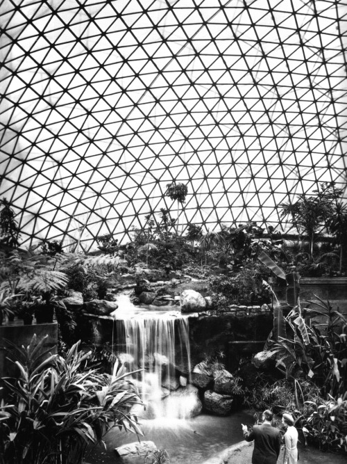 betonbabe:  Thomas C. Howard, architect/engineer THE CLIMATRON IN ST LOUIS, 1960 …gigantic geodesic dome housing the city's botanical gardens