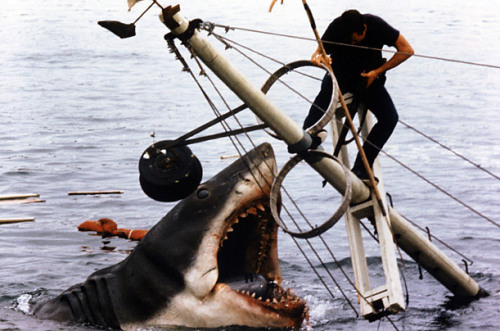 'Jaws' - Top 10 Unforgettable Shark Moments - TIME