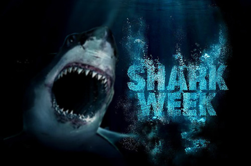 First Shark Week - Top 10 Unforgettable Shark Moments - TIME