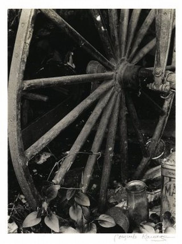 Consuelo Kanaga American, 1894-1978 [Untitled] (Wagon Wheel)