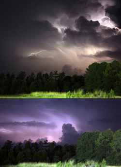 Lightning in Savannah, Ga.