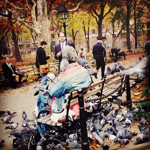 Bird man #instagram #nyc #iphoneography  #birds  (Taken with Instagram at Washington Square Park)