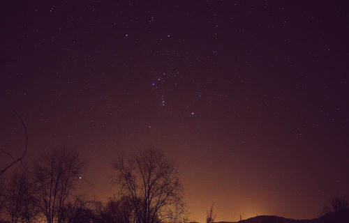 ohscience:  Orion above my hometown.  Sande, Norway.  (submission from questionlife)