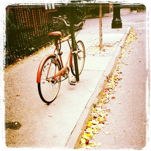 #iphoneography #nyc #instagram #happy #fall #home #bicycle (Taken with Instagram at Taïm)