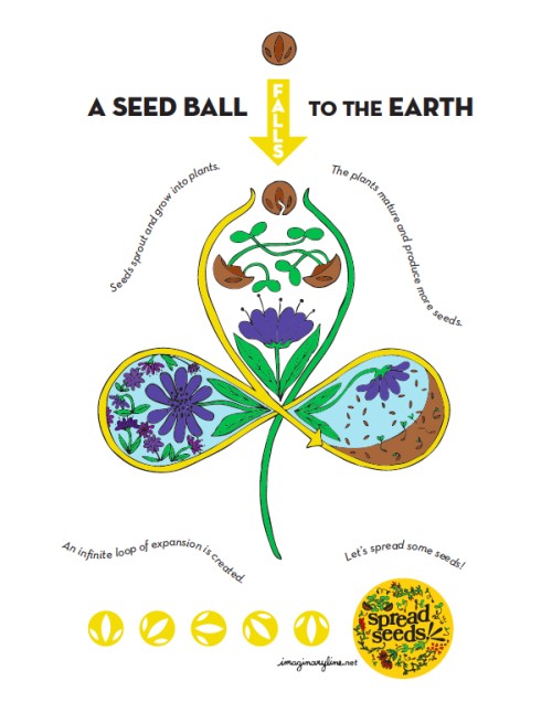 kickstarter:  Life of a seed ball.  From the Nebula Project.
