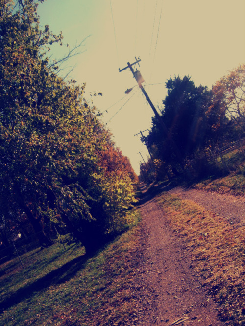 tiffanylynnolmstead:  the alley behind my house.