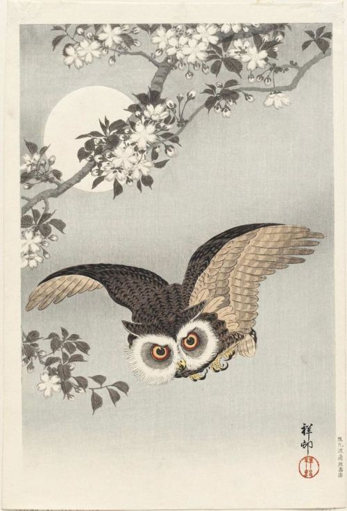 omgthatartifact:  Scops Owl, Cherry Blossoms, and the Moon Ohara Koson, 1926 The Museum of Fine Art, Boston