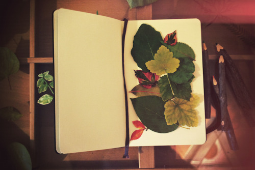 this is from the making of a leaf collage for my moleskine :) I picked out the leaves straight from my yard!