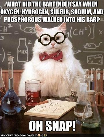 The geek in me can't get enough of Science Cat…