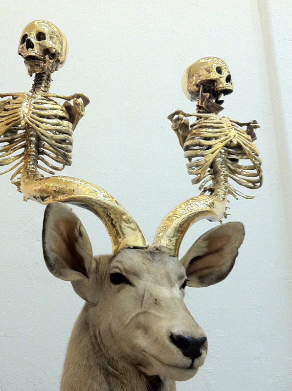 "Peter Gronquist ""The Evolution Will Be Fabulous""""Untitled (Greater Kudu)"" (DETAIL)"
