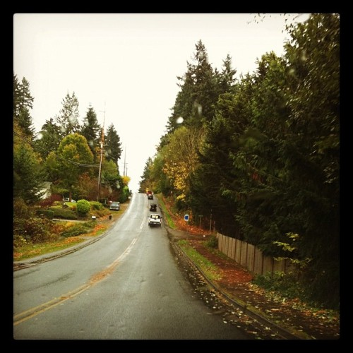 End of Fall= rain in the NW (Taken with instagram)