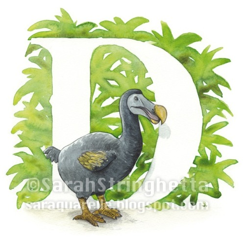 The lost Dodo @